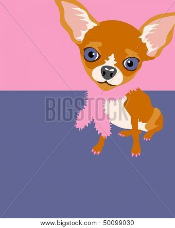 Illustration of a Chihuahua Dog