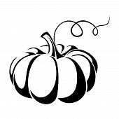 picture of tendril  - Vector illustration of black silhouette of pumpkin - JPG