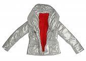 stock photo of jupe  - silver jacket - JPG