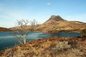 foto of polly  - Stac Pollaidh  - JPG