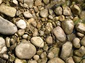 Stones On The River Bank