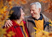 stock photo of hug  - seniors walking in autumn forest  - JPG