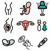 image of gynecological  - gynecology hand drawn stylish icons set in vector - JPG