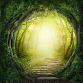 stock photo of deep  - Road in a magic dark green forest - JPG