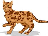 stock photo of bengal cat  - Illustration of a Cute Bengal Cat with One Paw Raised - JPG