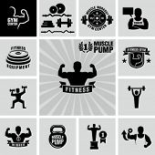 stock photo of biceps  - Bodybuilding fitness gym icons - JPG