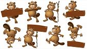 foto of beaver  - Illustration of a group of playful beavers with empty signboards on a white background - JPG