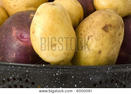 Organic Yukon Gold & Blue Potatoes