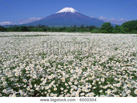 Japan Hakone Mountain Fuji