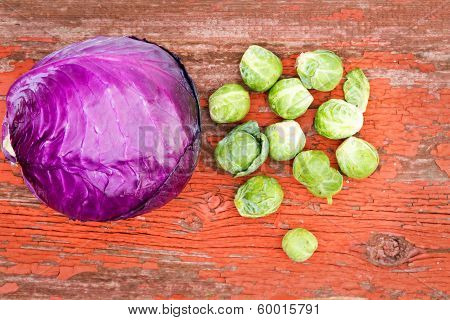 Radicchio And Brussels Sprouts
