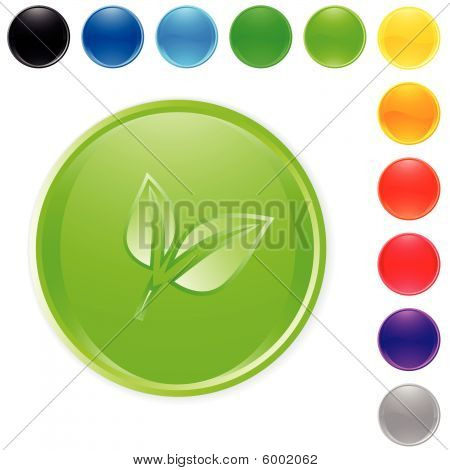 Button green leaf vector