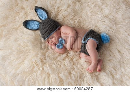Newborn Baby In Bunny Rabbit Costume