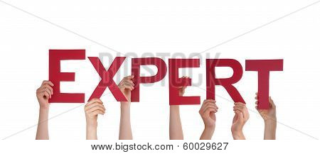 People Holding Expert