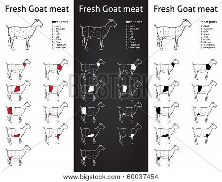FRESH GOAT meat parts Icons