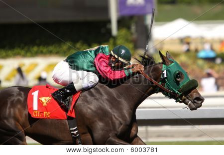 Lady Railrider Wins The 2009 California Cup Matron Stakes