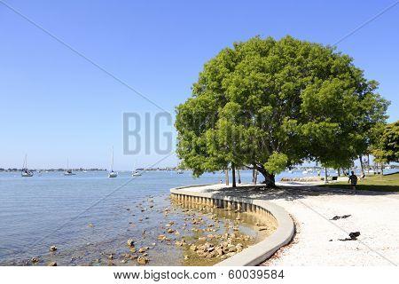 Sarasota Island Park And Marina