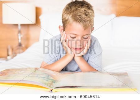 Happy blonde boy lying on bed reading a storybook at home in bedroom