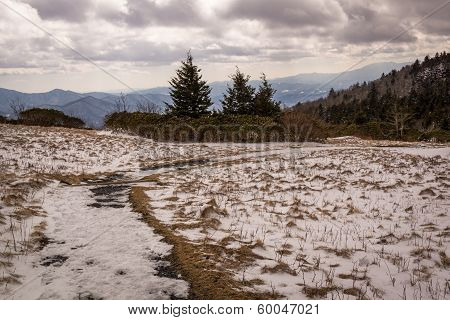 Roan Winter
