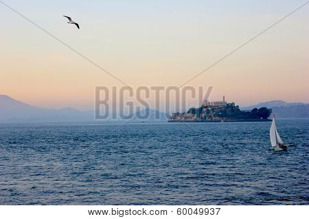 Alcatraz island with Seagull flying and a boat