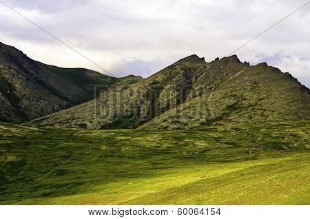 Valley view wild