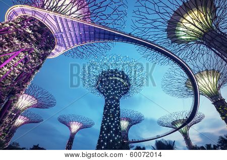 Singapore, Supertree Grove