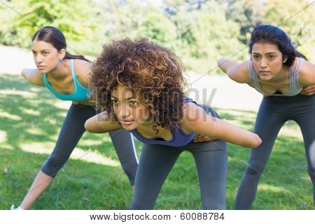 Dedicated sporty women exercising in park