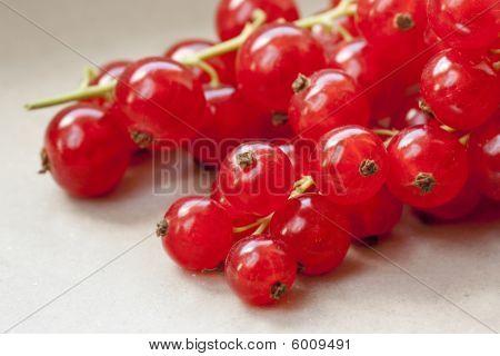 Bunch Of Cranberries