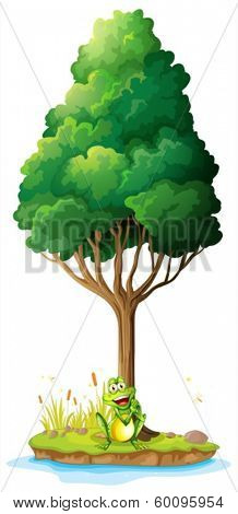Illustration of an island with a frog under the tree on a white background