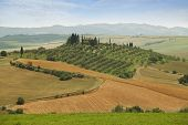 stock photo of farmhouse  - Typical Tuscany Landscape with Farmhouse - JPG