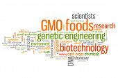 Genetic Food Engineering