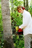 stock photo of man chainsaw  - Man cutting down a tree with a chainsaw - JPG