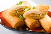 picture of chinese food  - closeup of Chinese style vegetable spring roll - JPG