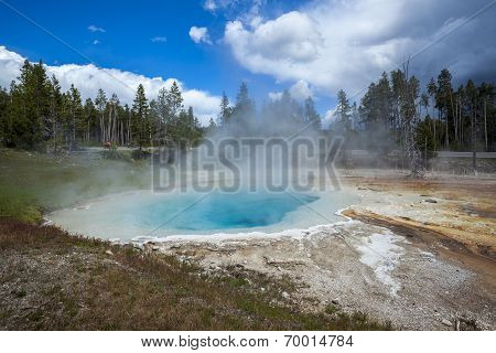 Yellowstone National Park,Wyoming, Usa