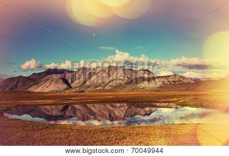 tundra in Alaska