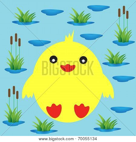 Duckling on a background of lake and reeds.