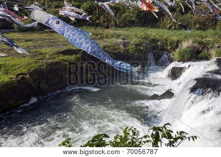 Blue carp streamer
