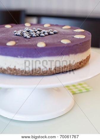 Raw Blueberry Vegan Cake