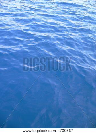 Vertical Ocean