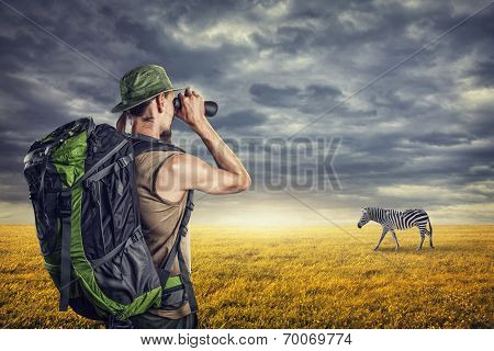 Tourist And Zebra