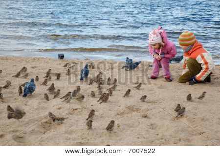 Little girl and boy play beach in autumn day. They feed sparrows and pigeons.