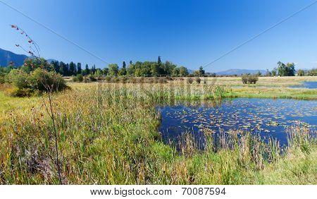 Lakeland in Montana