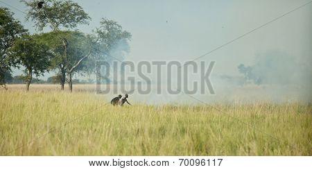 LILLIR, SOUTH SUDAN-DECEMBER 4 2010:Unidentified children start a grassfire to renew the land in Liliir, South Sudan
