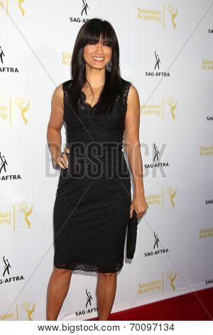 LOS ANGELES - AUG 12:  Kelly Hu at the Dynamic & Diverse:  A 66th Emmy Awards Celebration of Diversity Event at Television Academy on August 12, 2014 in North Hollywood, CA