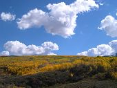 picture of colorado high country  - McClure Pass in autumn  - JPG