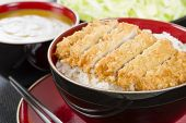 foto of pork cutlet  - Tonkatsu  - JPG