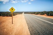 pic of fowl  - An image of a Australia road sign Mallee Fowl - JPG