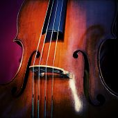 image of double-bass  - Close-up of double bass wooden musical instrument that is played with a bow