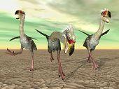 picture of terrorism  - Computer generated 3D illustration with the prehistoric Terror Bird Phorusrhacos - JPG