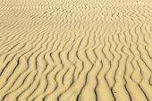 stock photo of dauphin  - waves at the sandy beach in harmonic pattern - JPG