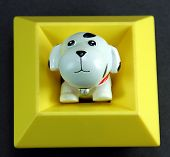 White Toy Dog Sitting Yellow Square  poster